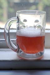 Composición Química del hongo Kombucha (100 ml. de té):