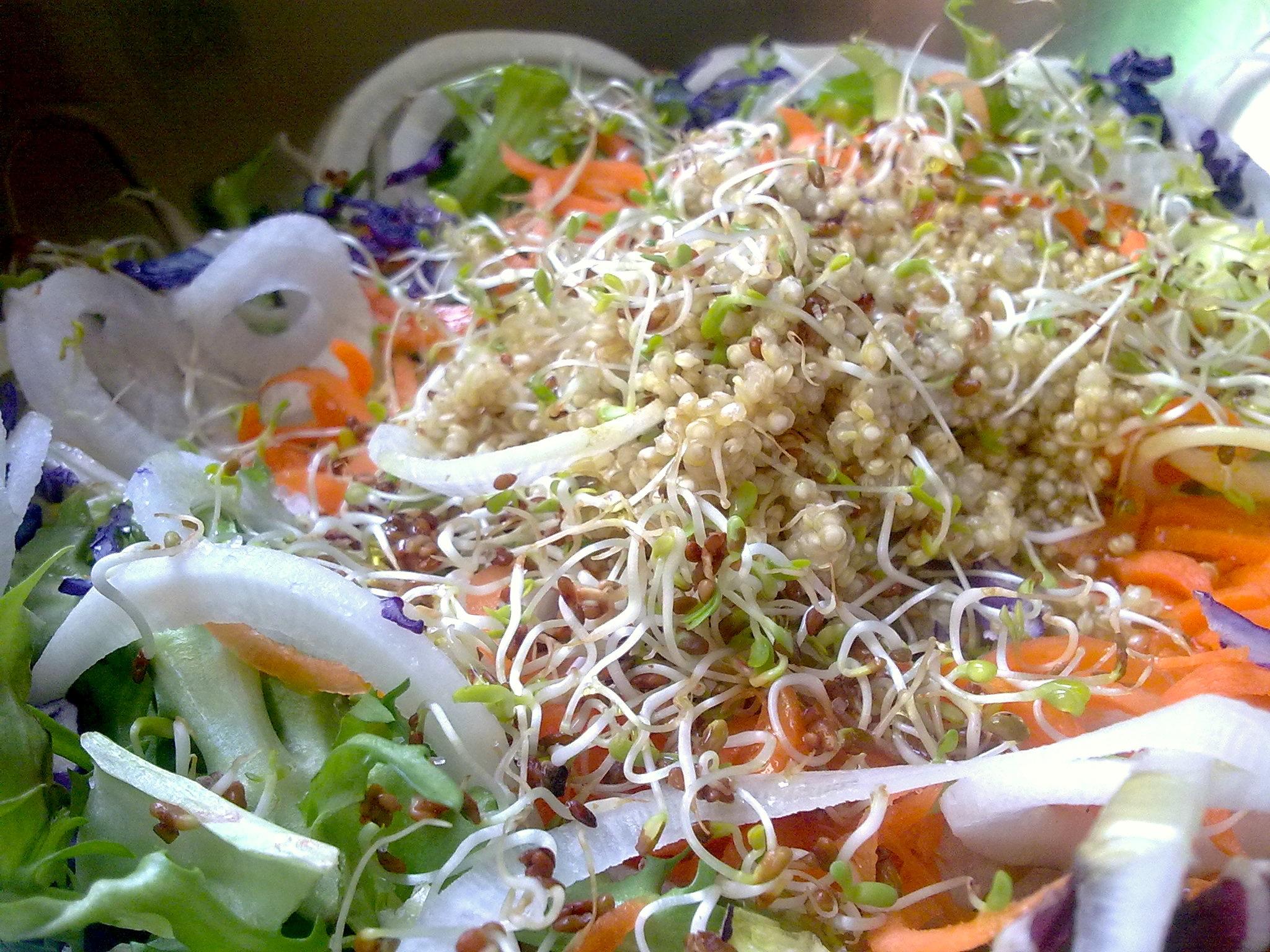 Las 9 mejores recetas con quinoa para adelgazar - Las mejores cenas para adelgazar ...