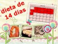 Dieta de 14 días