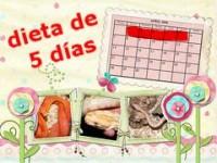 Dieta de los 5 días