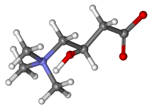 carnitina-0