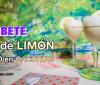 Sorbete de limón bajas calorías y apto para diabéticos