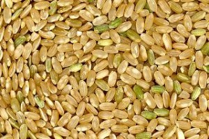 arroz yamani