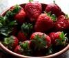 4 Batidos con fresas para adelgazar