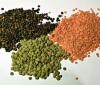 5 semillas para quemar grasas