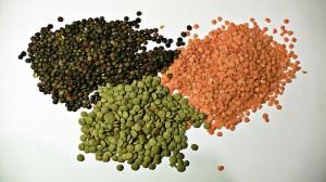 semillas