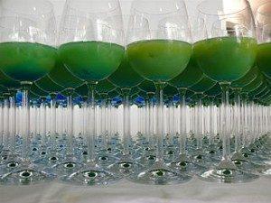 zumo verde 300x225
