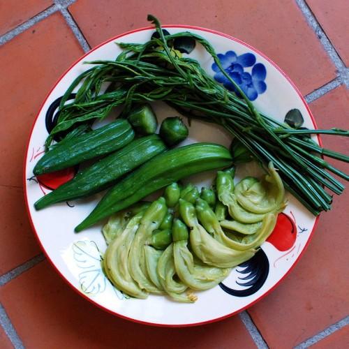 768px-Steamed_vegetables_CM