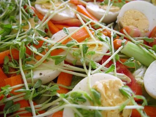 640px-Food_salad