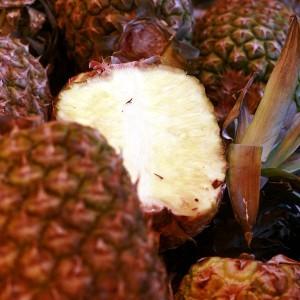 Pineapple_mg_3825