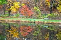 1024px-Autumn_Colours_02