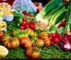 La dieta metabólica para la fibromialgia