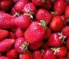 Dieta desintoxicante de fresas para adelgazar