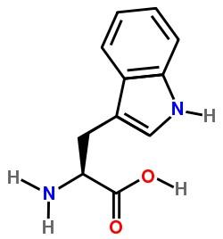 Triptófano para adelgazar