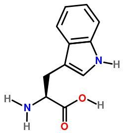 Estructura del triptofano